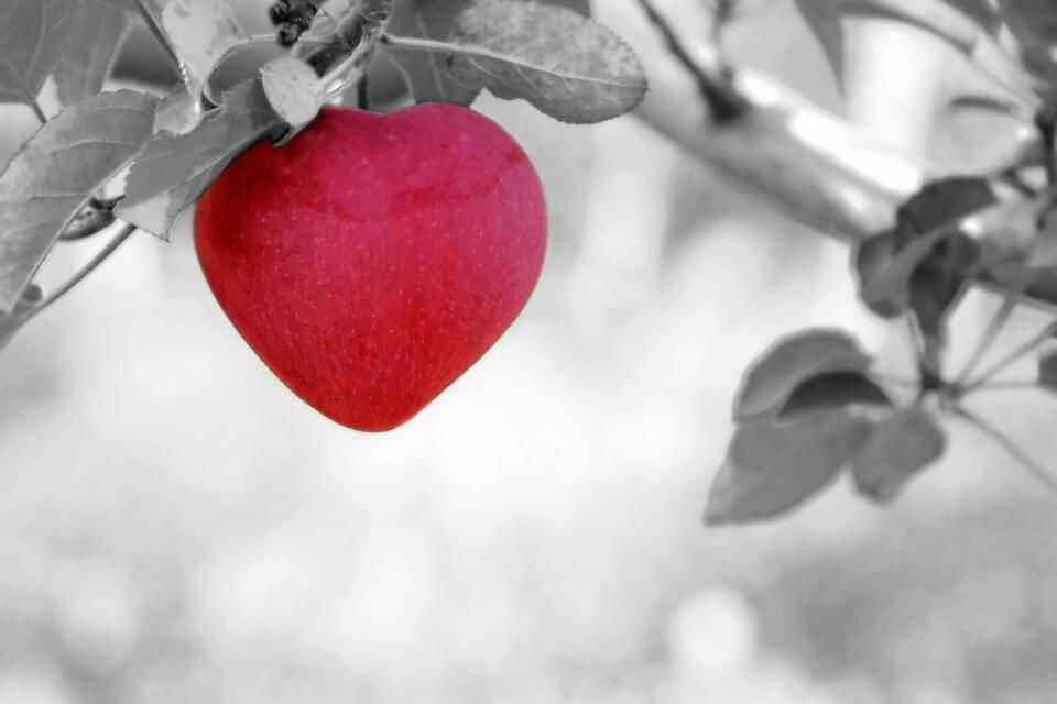 Liefde: Jij bent de maan