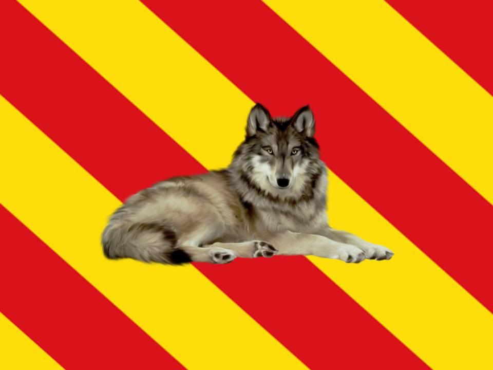 mechelsteinse-vlag
