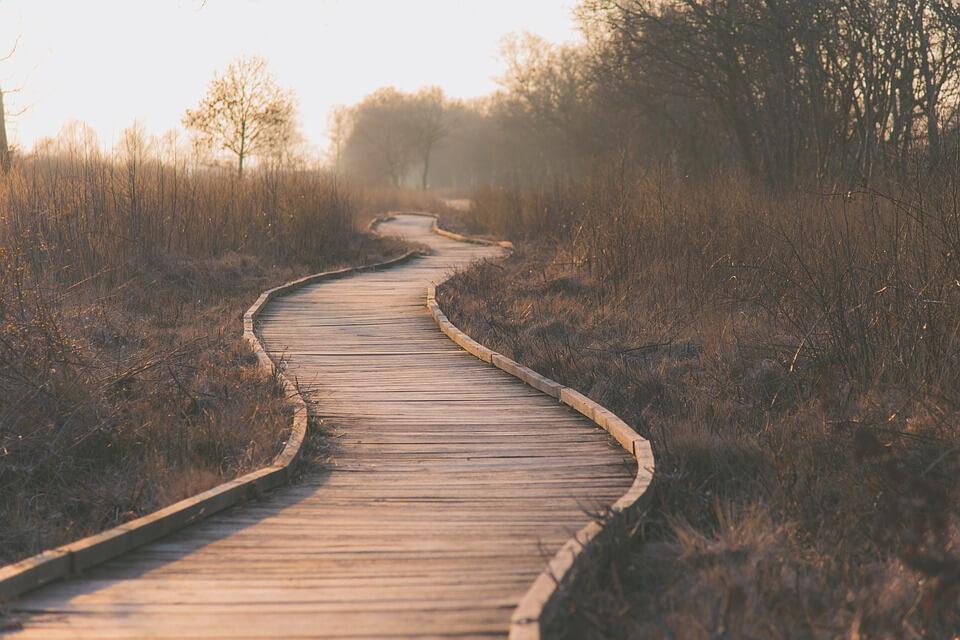 Column | Volg je eigen pad