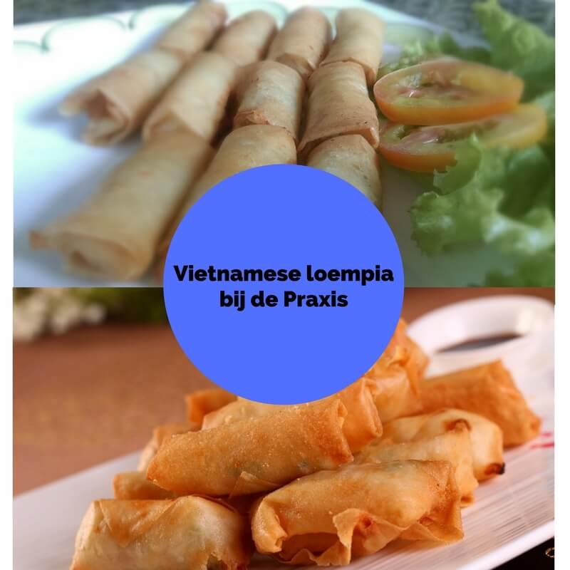 Levensherinnering   Vietnamese loempia bij de Praxis