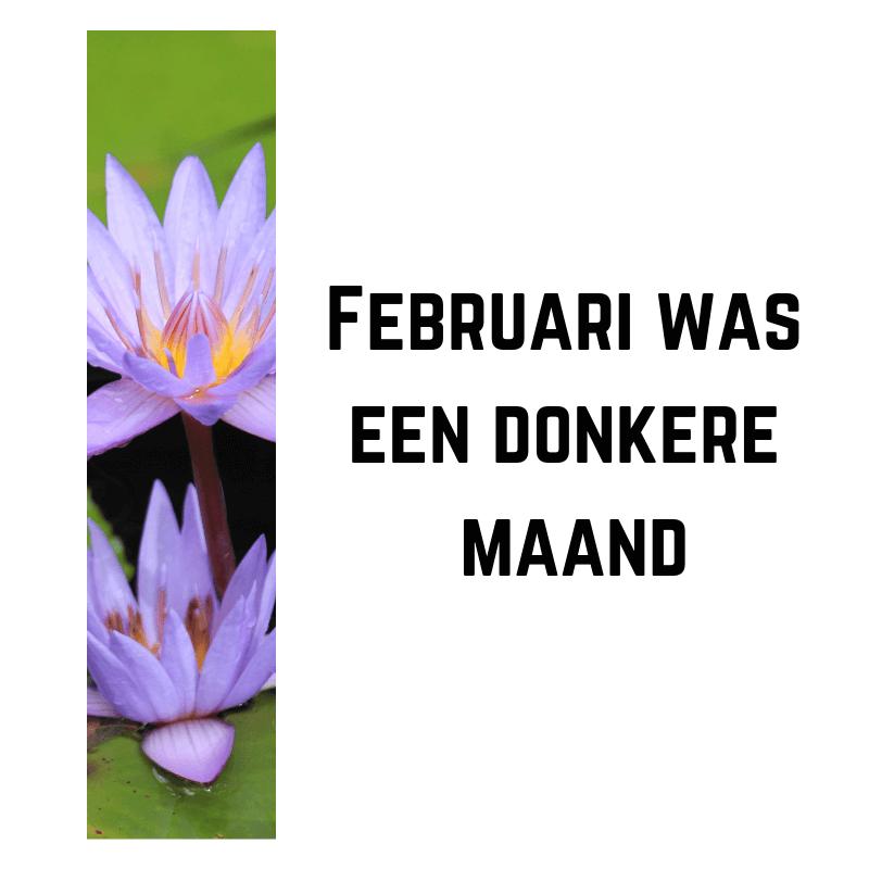 Februari was een donkere maand
