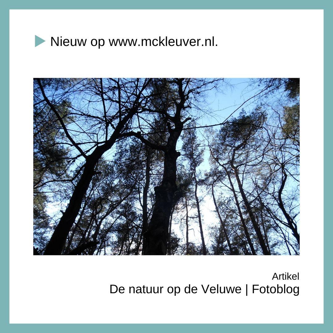 natuur op de Veluwe