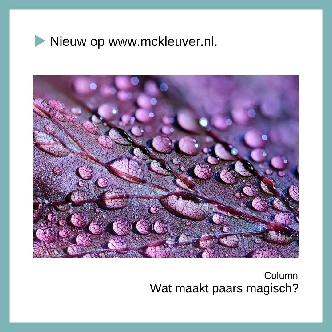 wat maakt paars magisch