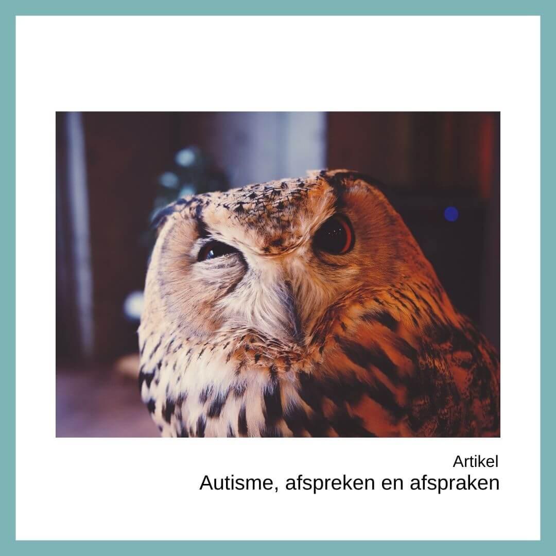 autisme, afspreken en afspraken