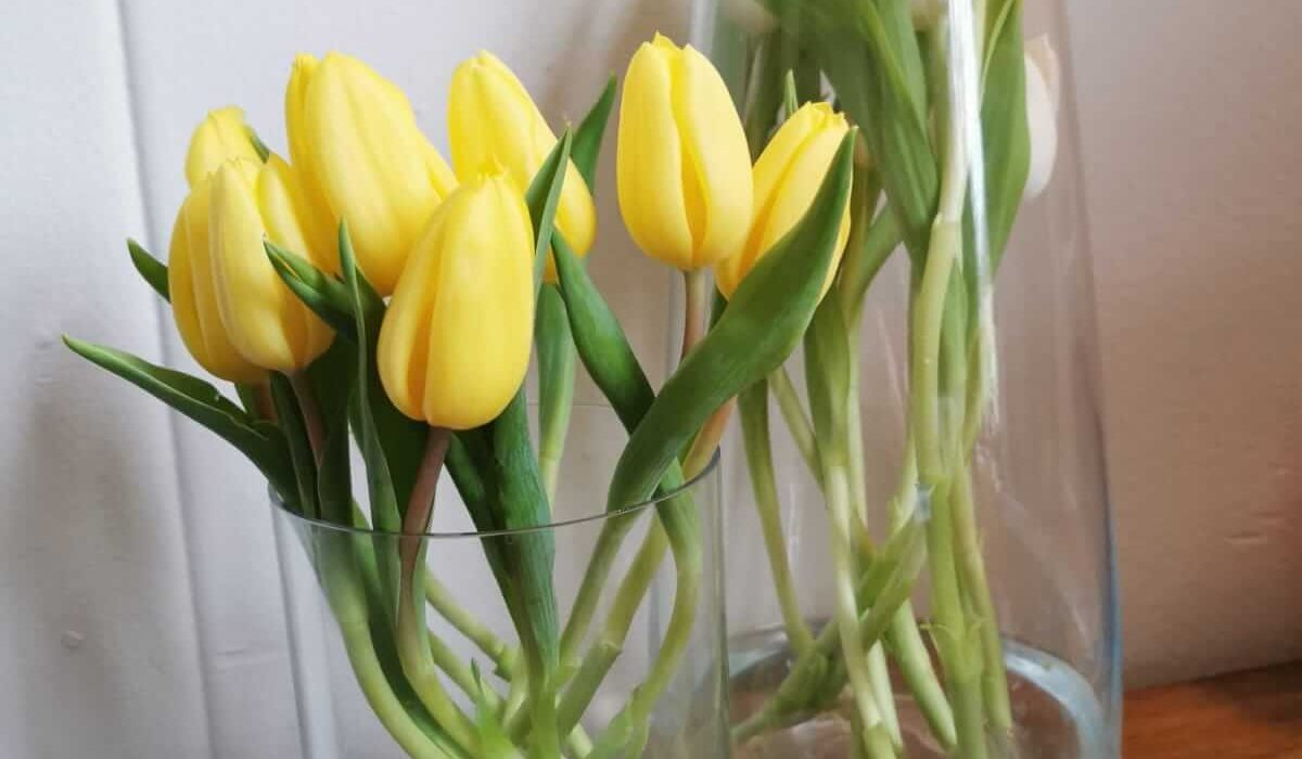 lente is in aantocht